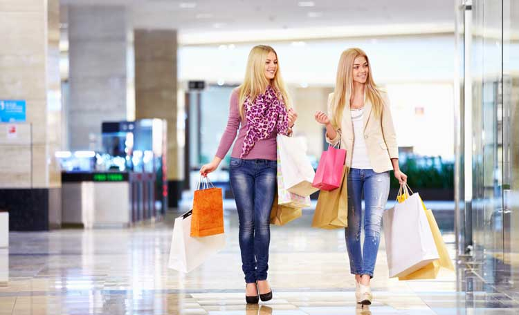 Women Shopping (image)