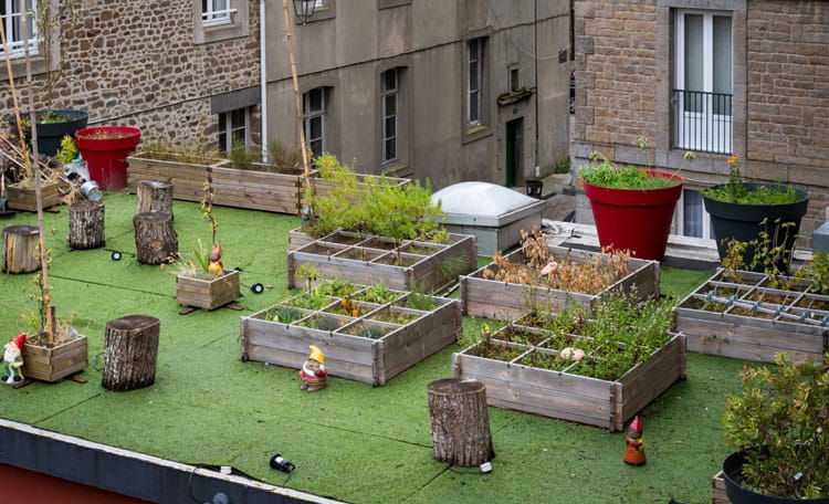 office rooftop garden with raised beds